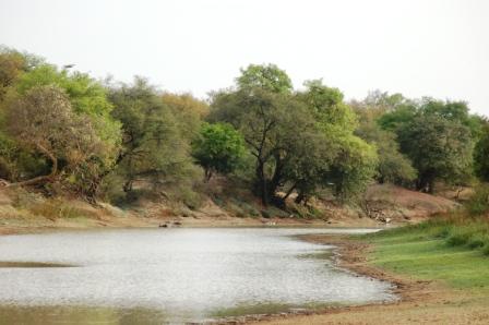 safari_paysage2