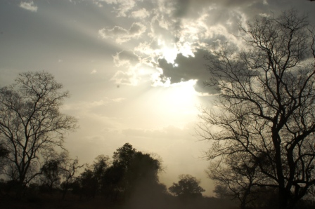 safari_paysage4