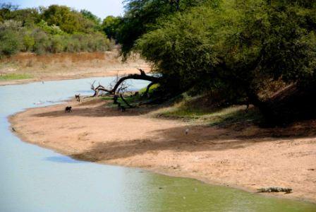 safari_paysage5