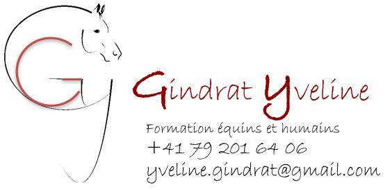 Logo Yveline_rouge_capture 2